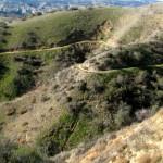 The Oakridge Trail