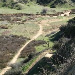Trail towards San Timeteo Canyon