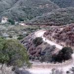 A family starts up Skyline Drive Trail
