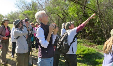 A Feel Good Bird Walk