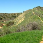 Trail up hill in newly acquired land