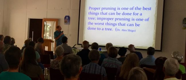 Tree Care During Drought: Highlights from Forum