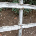 Fence along part of our property that I drilled holes into