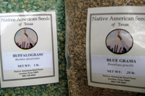 If Nature Could Talk Lower water native grass seeds
