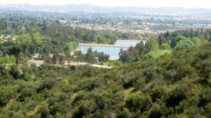 View of Yucaipa lake from Grape Street Trail