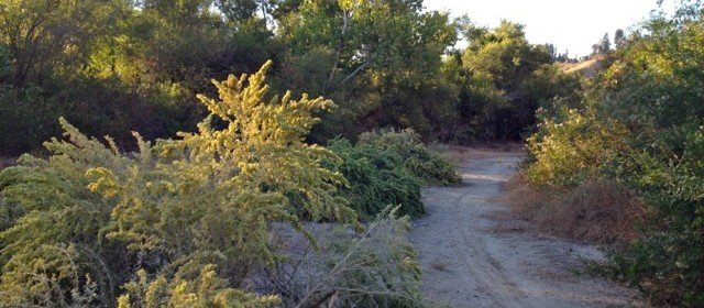 Great Hikes: San Timoteo Nature Sanctuary