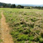 Wildwood offers nice flat trails as well as hillier ones