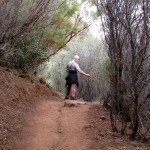 Trail through chaparral