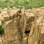 Woman rock climber off the Mishe Mokwa Trail