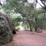 Split Rock Picnic Area
