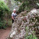 Liking the lichen boulders