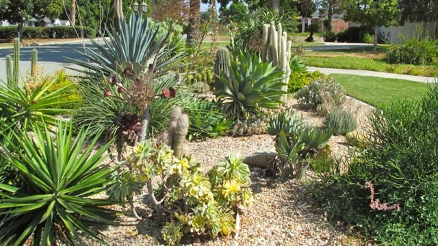 More examples of drought tolerant landscapes if nature for Landscape rock riverside ca
