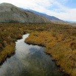 Salt Creek (where pupfish live)