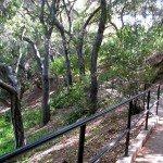 Walkway at Rancho Santa Ana Garden