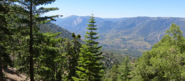 Great Hikes: Two Special San Bernardino National Forest Hikes