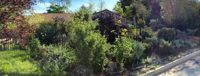 See our native landscaping on the Redlands Garden Tour April 16-17