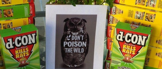 Rodent Poisons: What Communities are Doing (Part 3)
