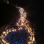 Lighting up the riverbed at Christmastime