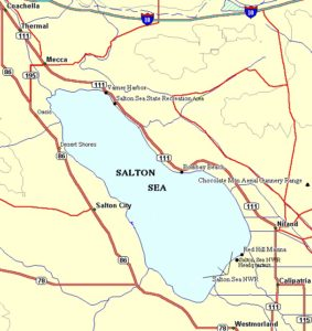 Salton Sea Tour highlights burrowing owls sandhill cranes